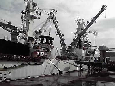 今朝の沼津港は大漁!_d0050503_16553954.jpg