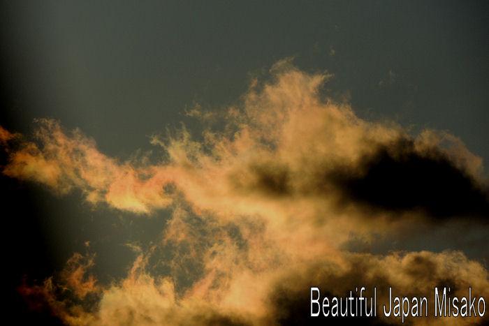 戦場のメリークリスマス/デヴィッド・シルヴィアン 【禁じられた色彩】_c0067206_7325134.jpg