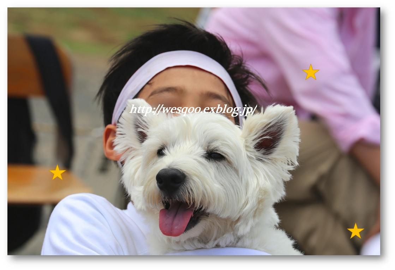 お気に入りの写真 笑顔がいっぱい♪_a0161111_1356575.jpg