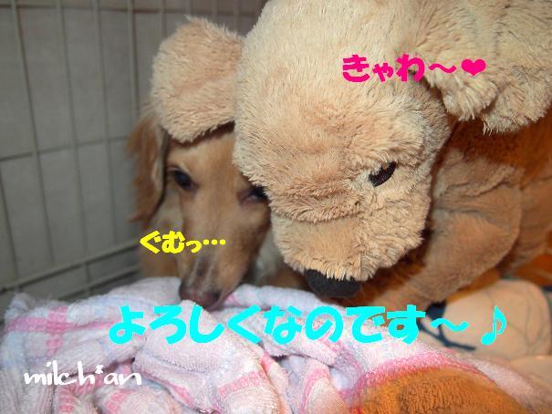 b0115642_22451593.jpg