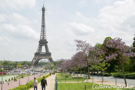 パリのアテンドあちらこちらへ_c0024345_612063.jpg
