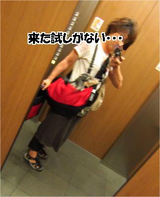 d0020869_12231276.jpg