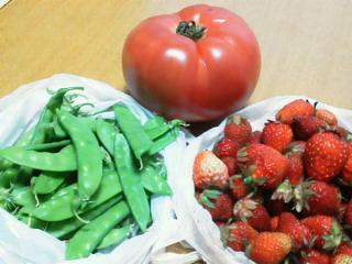野菜のおすそわけ_f0255704_18294269.jpg