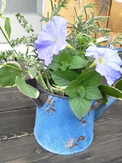 花と籠とポット_f0255704_19332182.jpg