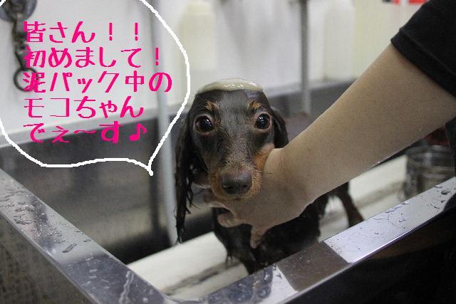おはよぉ~ございまぁ~す!!_b0130018_0224787.jpg