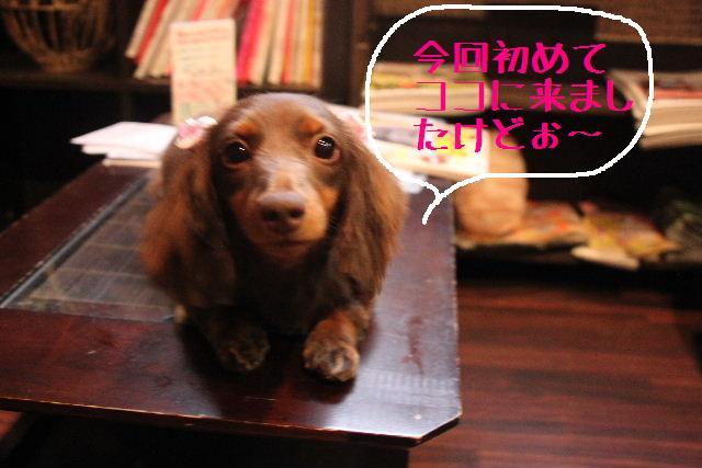 おはよぉ~ございまぁ~す!!_b0130018_023427.jpg