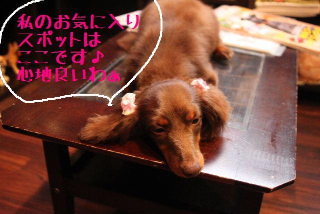 おはよぉ~ございまぁ~す!!_b0130018_0234894.jpg