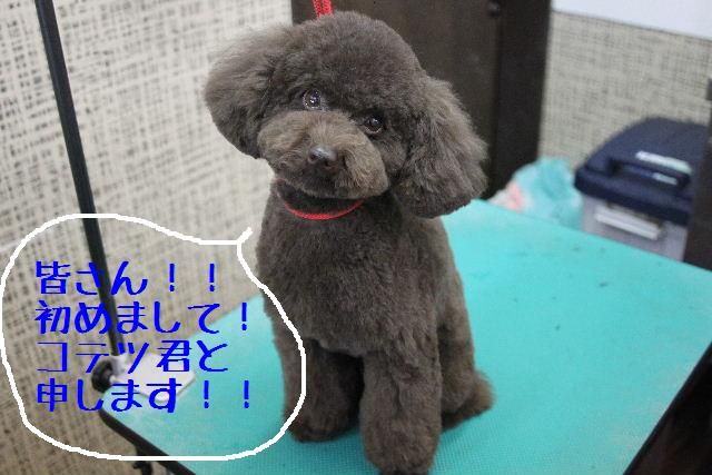 おはよぉ~ございまぁ~す!!_b0130018_0251663.jpg