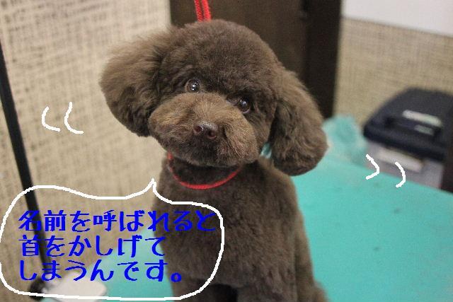 おはよぉ~ございまぁ~す!!_b0130018_0252389.jpg