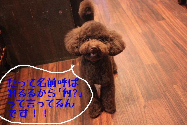 おはよぉ~ございまぁ~す!!_b0130018_0253080.jpg