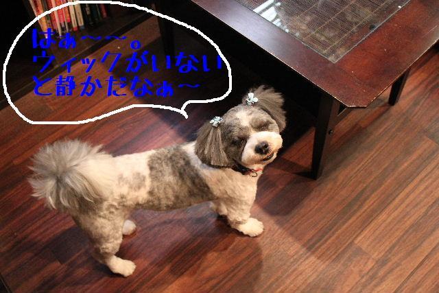 おはよぉ~ございまぁ~す!!_b0130018_0271151.jpg