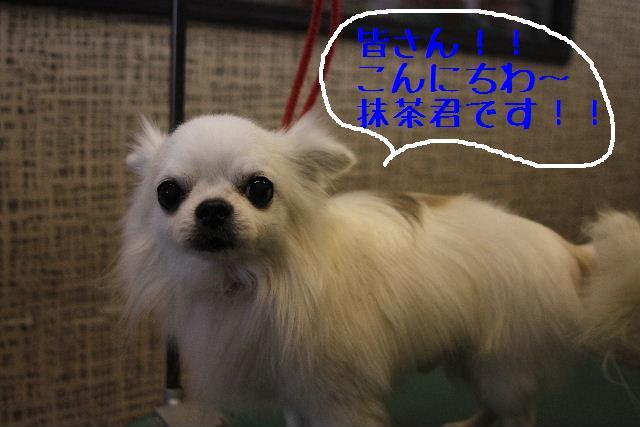 おはよぉ~ございまぁ~す!!_b0130018_0293793.jpg
