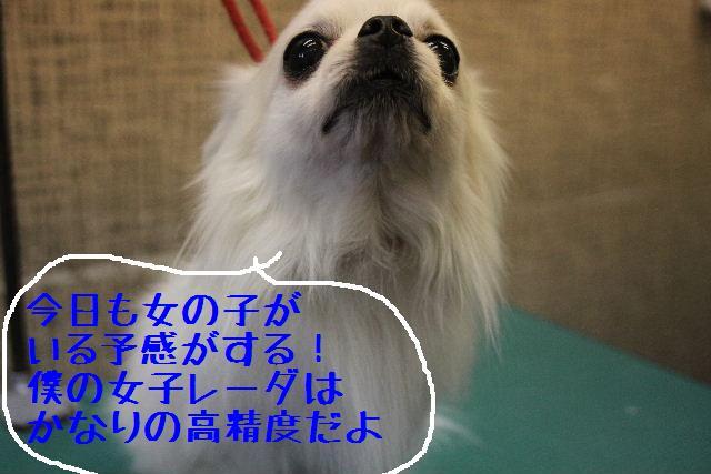 おはよぉ~ございまぁ~す!!_b0130018_0294473.jpg