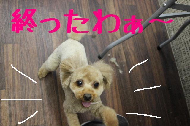 おはよぉ~ございまぁ~す!!_b0130018_0332352.jpg