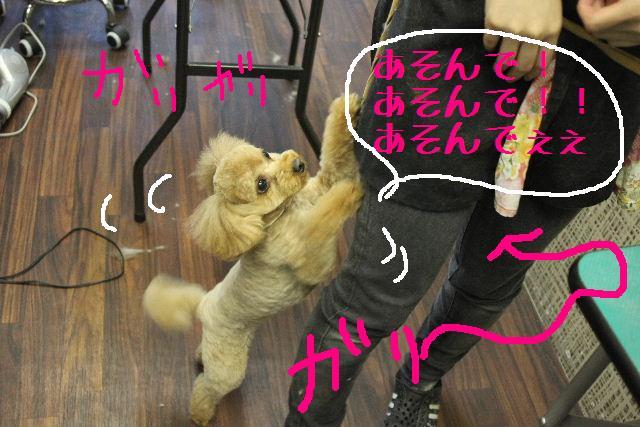 おはよぉ~ございまぁ~す!!_b0130018_033287.jpg