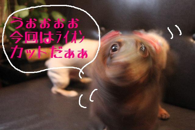 おはよぉ~ございまぁ~す!!_b0130018_0364976.jpg