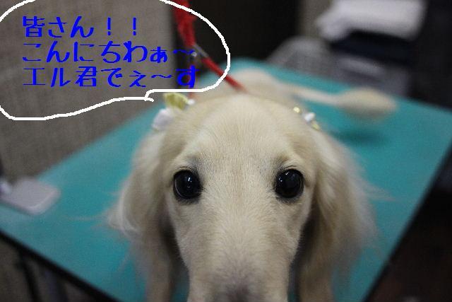 おはよぉ~ございまぁ~す!!_b0130018_036962.jpg