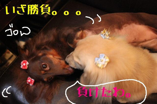 おはよぉ~ございまぁ~す!!_b0130018_037227.jpg