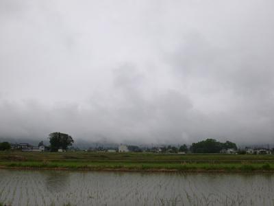 雨の一日_a0014840_23201921.jpg
