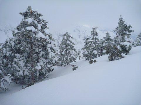 【滑走レポ 2013.4.22】 4月下旬の新雪に道中ドキドキ(笑)@かぐら_e0037849_9104497.jpg
