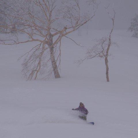 【滑走レポ 2013.4.22】 4月下旬の新雪に道中ドキドキ(笑)@かぐら_e0037849_9142641.jpg