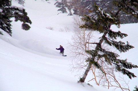 【滑走レポ 2013.4.22】 4月下旬の新雪に道中ドキドキ(笑)@かぐら_e0037849_9152154.jpg