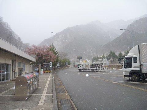 【滑走レポ 2013.4.22】 4月下旬の新雪に道中ドキドキ(笑)@かぐら_e0037849_94845.jpg