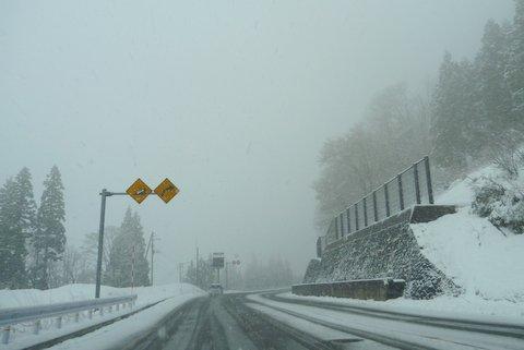 【滑走レポ 2013.4.22】 4月下旬の新雪に道中ドキドキ(笑)@かぐら_e0037849_951266.jpg