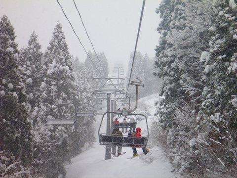 【滑走レポ 2013.4.22】 4月下旬の新雪に道中ドキドキ(笑)@かぐら_e0037849_962399.jpg