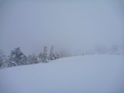 【滑走レポ 2013.4.22】 4月下旬の新雪に道中ドキドキ(笑)@かぐら_e0037849_985594.jpg