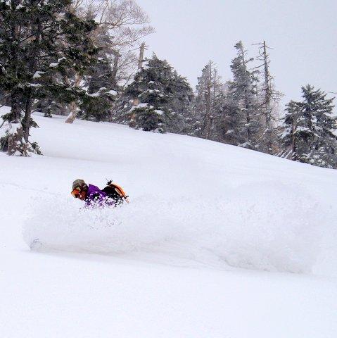 【滑走レポ 2013.4.22】 4月下旬の新雪に道中ドキドキ(笑)@かぐら_e0037849_993628.jpg