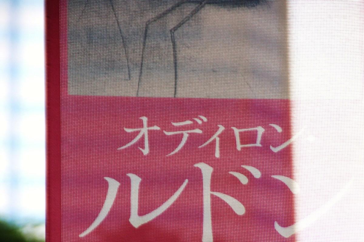 オディロン・ルドン―夢の起源―展~曲がりくねった樹・ゴヤ頌・未完の聖母@損保ジャパン東郷青児美術館_f0006713_21471166.jpg