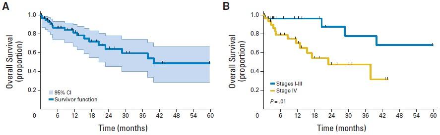 HER2遺伝子変異のある非小細胞肺癌の臨床経過_e0156318_1074390.jpg
