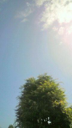 梅雨の晴れまで…_d0051146_12325923.jpg