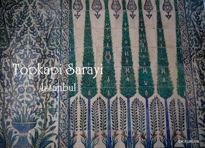 トルコ旅行記 36 トプカピ宮殿Ⅲ_a0092659_1861972.jpg