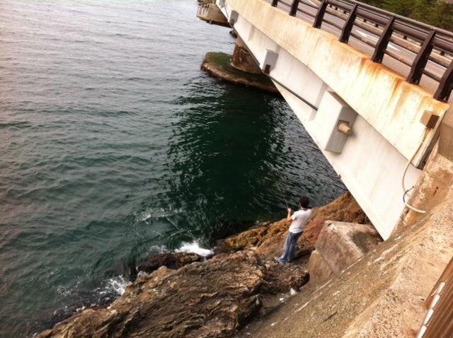 新潟アルバム④~獅子ヶ鼻大橋で岩山に挑む~_f0096569_731754.jpg