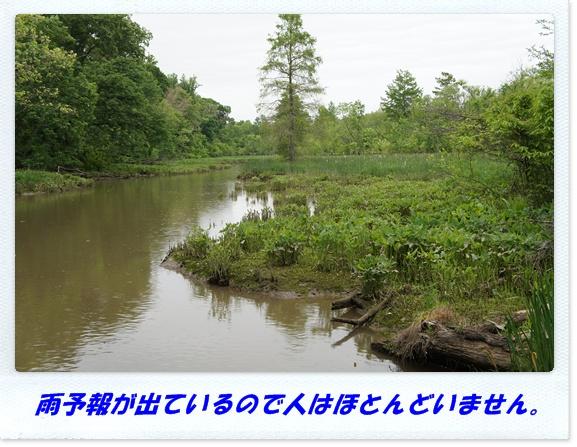 b0166491_3155858.jpg