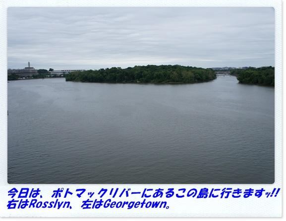 b0166491_31694.jpg