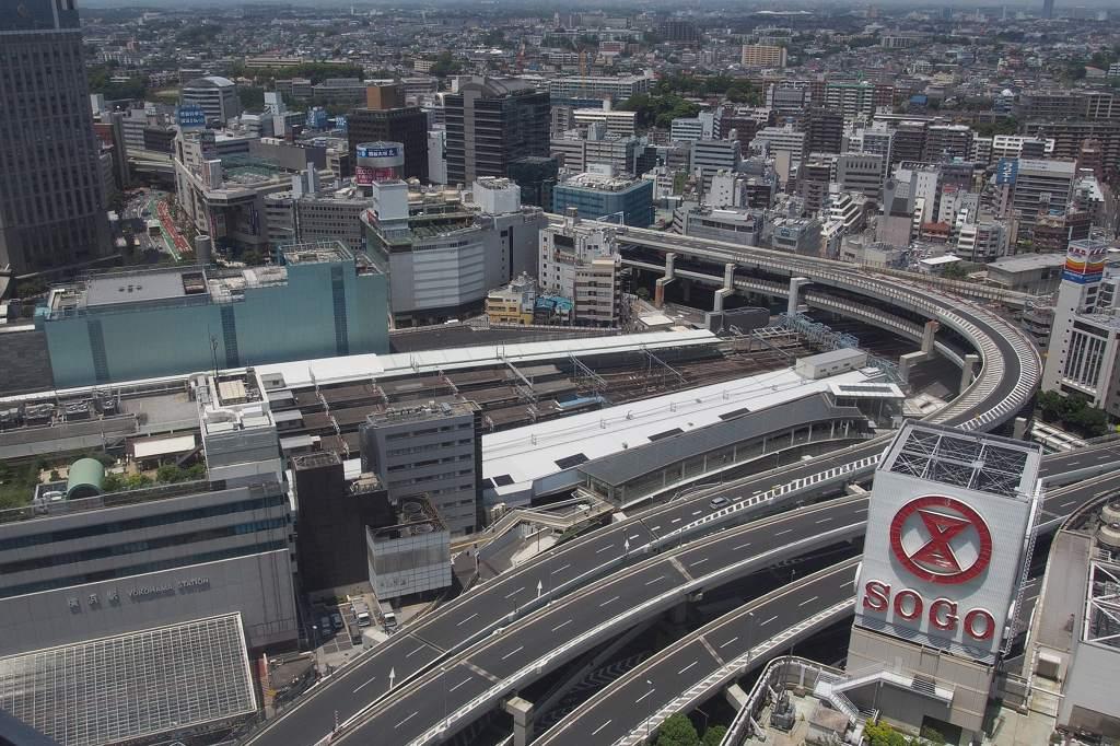 イケメン若鳥と雛/ハルジオン/横浜駅東口を見下ろすと_b0024798_2102752.jpg