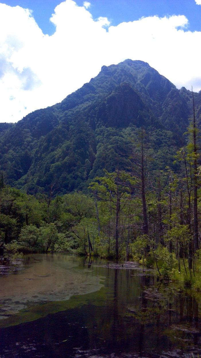 山の季節_d0116009_0334880.jpg