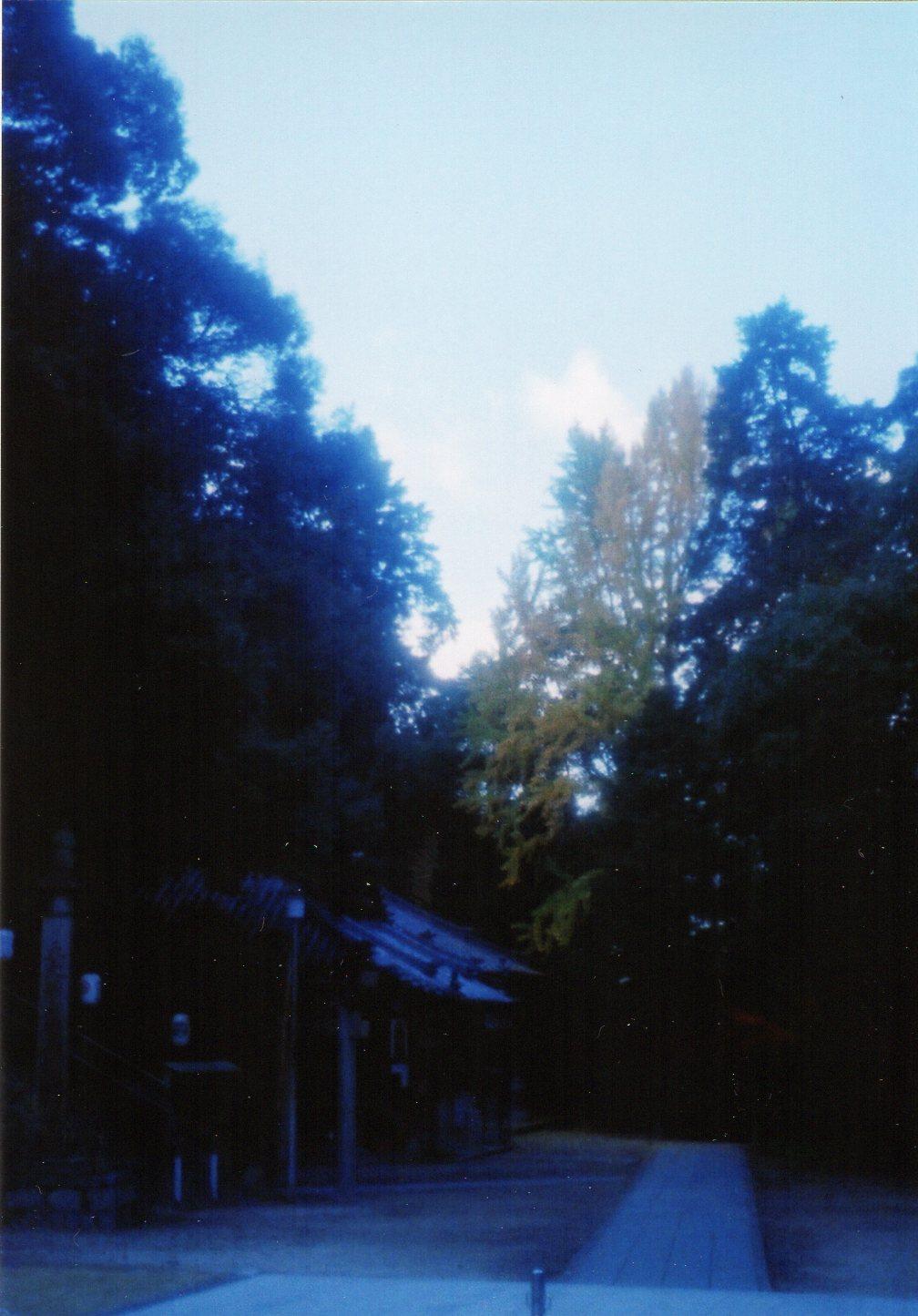 f0190009_1483485.jpg