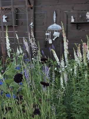 2013年 茨城のお庭その3_c0167112_191550.jpg