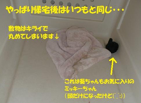 f0121712_6154651.jpg
