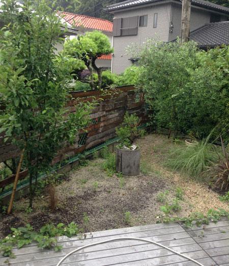 梅雨入り大掃除_a0262845_16585046.jpg