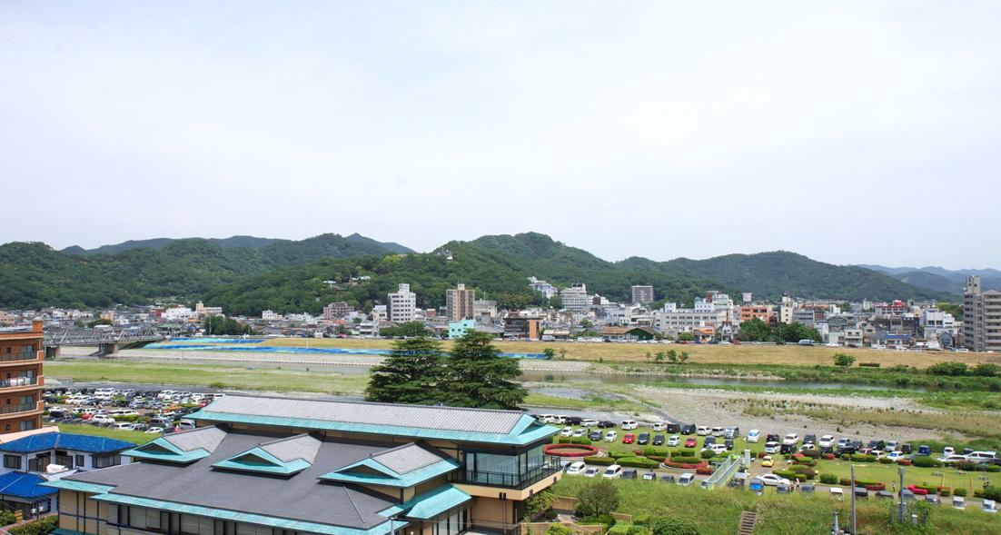 ペタンコ祭 (初山祭) 2013.6.1 足利 浅間神社_e0127948_16234474.jpg