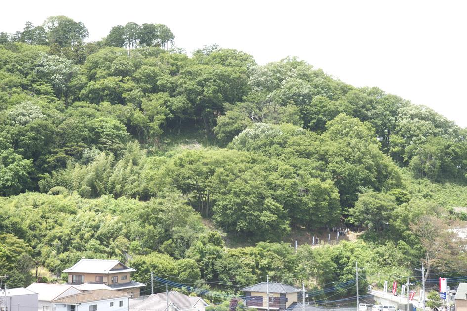 ペタンコ祭 (初山祭) 2013.6.1 足利 浅間神社_e0127948_16235686.jpg