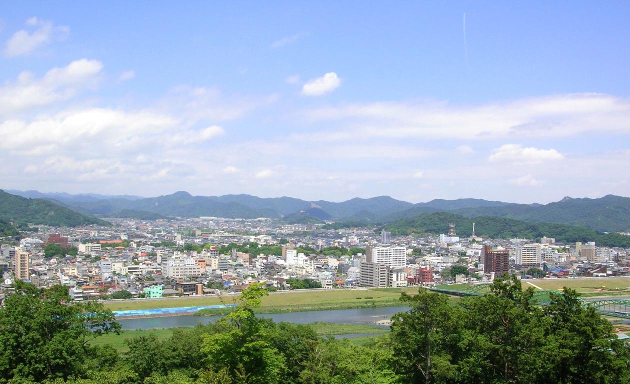 ペタンコ祭 (初山祭) 2013.6.1 足利 浅間神社_e0127948_162955100.jpg