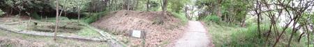 ササユリのピンク系大輪が今が見ごろ  in うみべの森_c0108460_22124442.jpg