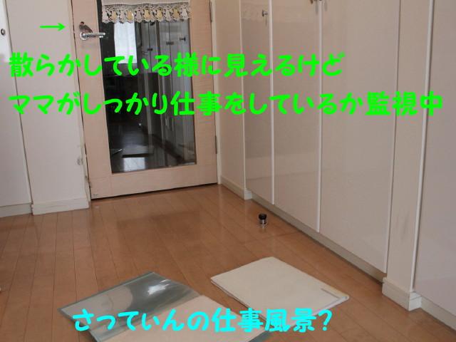 b0158061_20473046.jpg