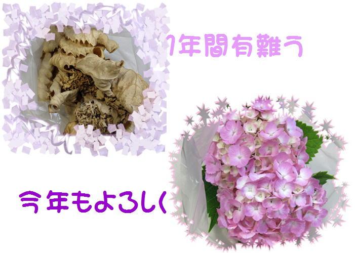 f0003174_1148647.jpg